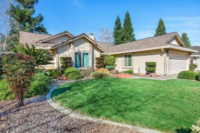 Folsom  Single Family Home For Sale: 116 Witmer Drive