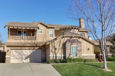 El Dorado Hills Single Family Home For Sale: 1560 Terracina Drive
