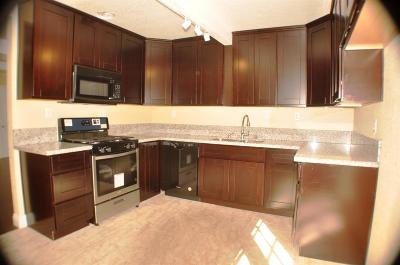 Sacramento Single Family Home For Sale: 260 Arcade Boulevard