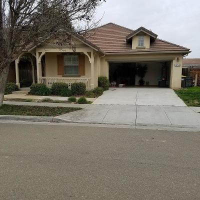 Lathrop Single Family Home For Sale: 16748 Ore Claim Tri