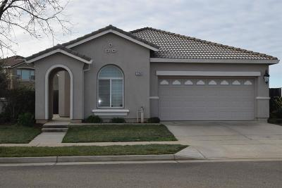 Rancho Cordova Single Family Home For Sale: 12200 Hetch Hechy Drive
