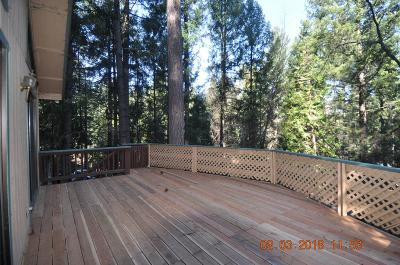 Pollock Pines Single Family Home For Sale: 5493 Sierra Springs Drive