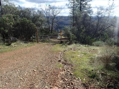 Nevada County Commercial Lots & Land For Sale: 17161 Space Street