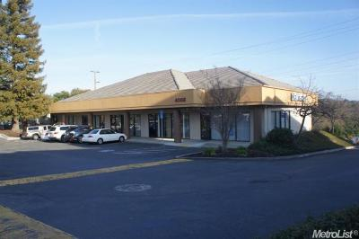 Cameron Park Commercial For Sale: 4058 Flying C Road