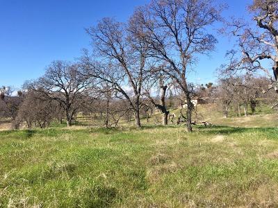 La Grange Residential Lots & Land For Sale: 381 Las Flores Court
