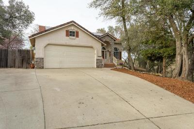 El Dorado Hills Single Family Home For Sale: 3329 Woedee Drive