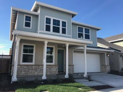 Lathrop Single Family Home For Sale: 17895 Leto Way