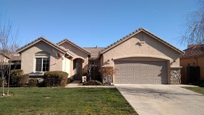 Valley Springs Single Family Home For Sale: 127 Gold Dust Drive