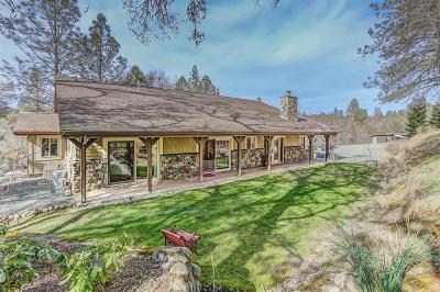 Penn Valley Single Family Home For Sale: 15576 Oak Meadow Road