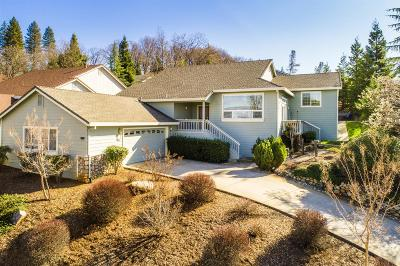 Grass Valley Single Family Home For Sale: 163 Success Mine Loop