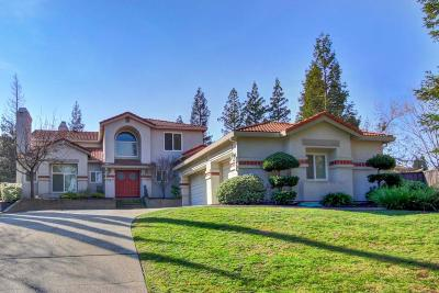 Folsom Single Family Home For Sale: 125 Clemsford Square
