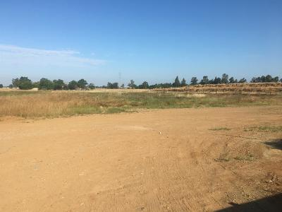 Sacramento Residential Lots & Land For Sale: Hedge Ave