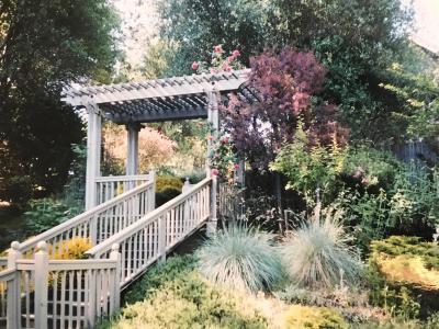Groveland Single Family Home For Sale: 20612 Longridge Court