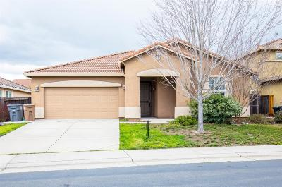 Elk Grove Single Family Home For Sale: 5426 White Lotus Way