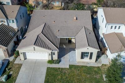 Elk Grove Single Family Home For Sale: 9816 Spring View Way