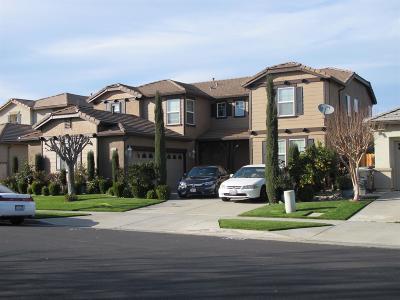 West Sacramento Single Family Home For Sale: 2424 Pheasant Hollow Drive