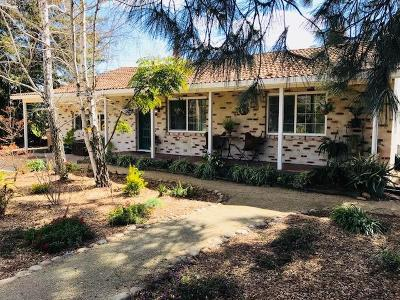 Lodi, Stockton Single Family Home For Sale: 5066 Bear Creek Road