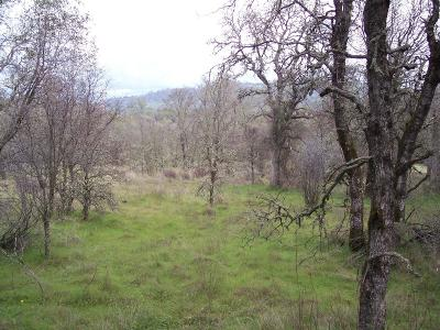 Yuba County Residential Lots & Land For Sale: 12160 Nicole Way