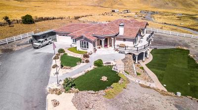 Tracy CA Single Family Home For Sale: $1,695,000