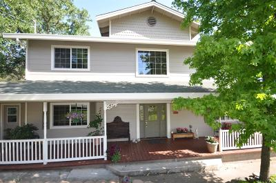 Sutter Creek Single Family Home For Sale: 150 Gopher Flat Road