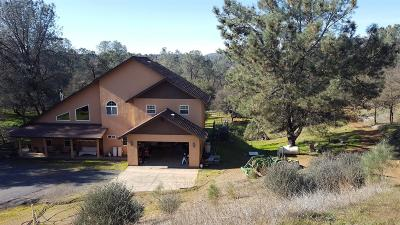 Copperopolis Single Family Home For Sale: 434 Pinon Drive
