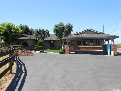 Modesto Single Family Home For Sale: 7037 Dusty Lane