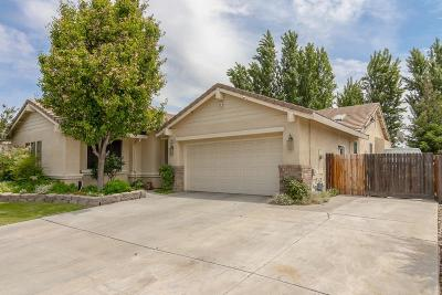 Ceres Single Family Home For Sale: 3802 Granite Falls Drive