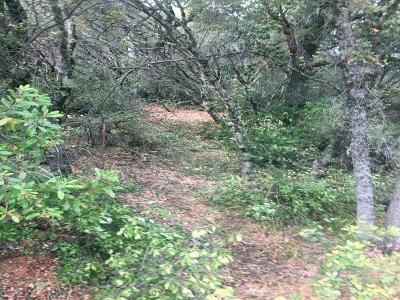 Yuba County Residential Lots & Land For Sale: 7655 La Porte Road