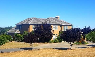 Valley Springs Single Family Home For Sale: 7474 Ospital Rd.