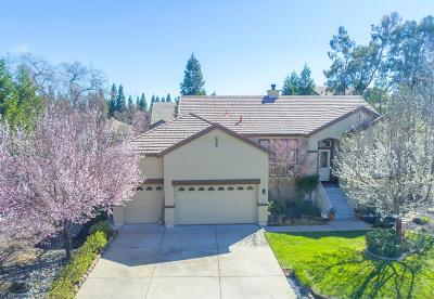 Rancho Murieta Single Family Home For Sale: 6133 Puerto
