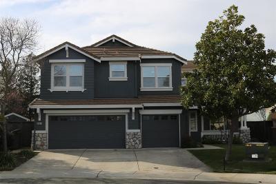Sacramento County Single Family Home For Sale: 9467 Mandrake Court