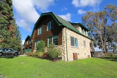 Placerville Single Family Home For Sale: 4040 Strickland Mine Road