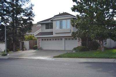 Rocklin Single Family Home For Sale: 6016 Turquoise Drive