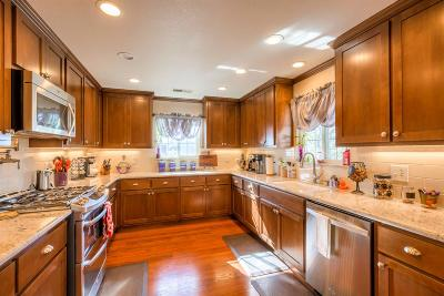 Valley Springs Single Family Home For Sale: 6281 Treosti Place