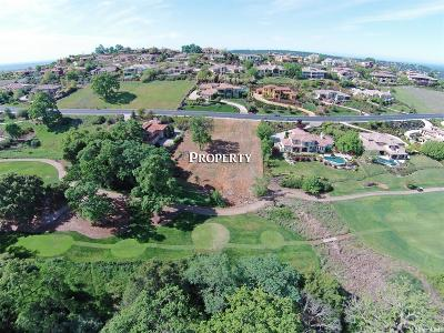 El Dorado Hills Residential Lots & Land For Sale: 4317 Greenview Drive