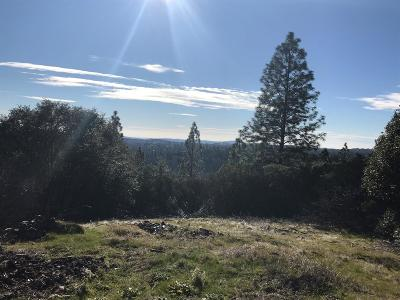Garden Valley CA Residential Lots & Land For Sale: $89,000