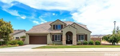 Patterson Single Family Home For Sale: 20940 Valley View Place