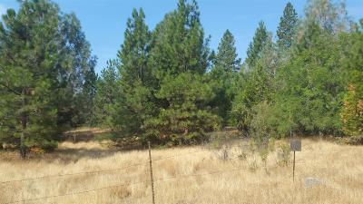 Pioneer Residential Lots & Land For Sale: Carson Drive