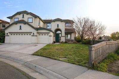 Single Family Home For Sale: 241 Menard Circle