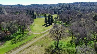 Auburn Residential Lots & Land For Sale: 13555 Dry Creek Road