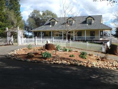 Placerville Single Family Home For Sale: 4381 Hillock Drive