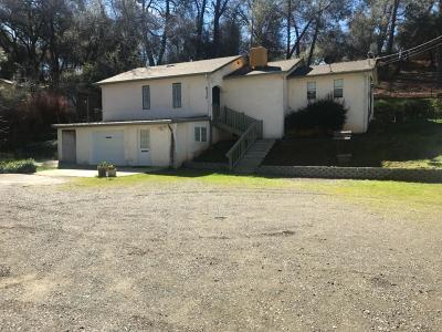 El Dorado Single Family Home For Sale: 6330 Pleasant Valley Road