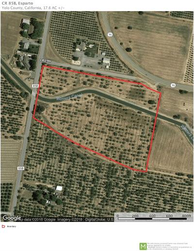 Yolo County Commercial Lots & Land For Sale: County Road 85b