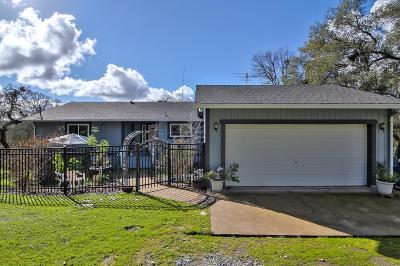 El Dorado Single Family Home For Sale: 3240 Balmaceda Road
