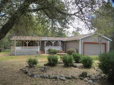 Groveland Single Family Home For Sale: 12884 Green Valley Circle