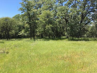 Auburn Residential Lots & Land For Sale: 3 Paradise Court