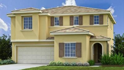 Patterson Single Family Home For Sale: 21161 Cabernet Drive