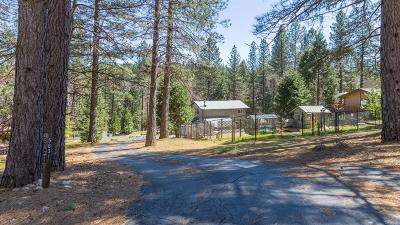 Placer County Single Family Home For Sale: 5831 Arrowhead Drive