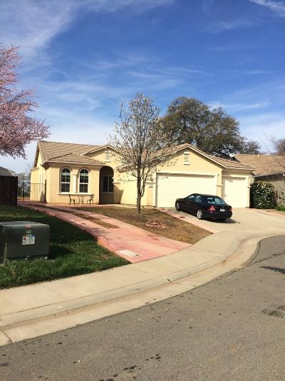 Lincoln Single Family Home For Sale: 306 Palazzo Ct.