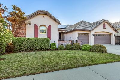 Auburn Single Family Home For Sale: 565 Sawka Drive